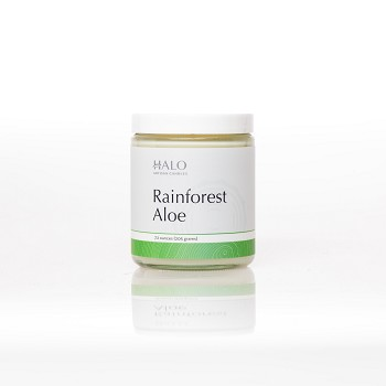 Rainforest Aloe Soy Jar Candle